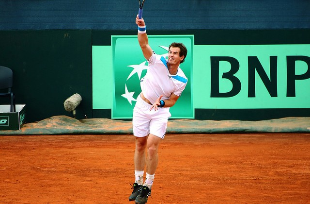 Andy Murray, Davis Cup 2014