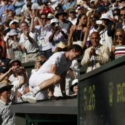 Andy Muray climbs into the stands, Wimbledon 2013